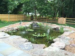 triyae com u003d backyard ponds maryland various design inspiration