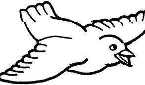 bird coloring pages to print bird coloring pages popular printable bird coloring pages at best