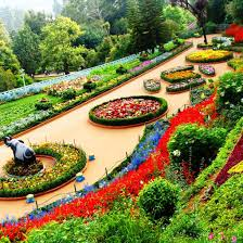 Information About Botanical Garden Ooty Botanical Gardens Ooty India Places Of Pinterest