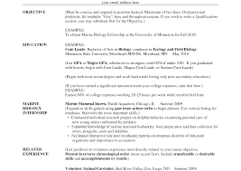 exles of resumes for high school students resume template education if still in high school section of for