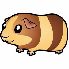 cartoon guinea pig pictures free download clip art free clip