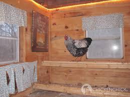 the chicken supplemental light in the chicken coop why u0026 how