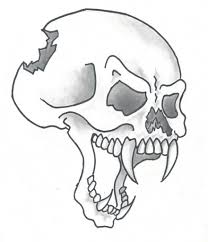 simple skull drawing how to draw a skull with wings part 1 of 2
