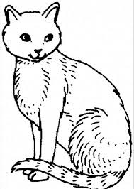homely idea cat printable coloring pages cats and kitten coloring