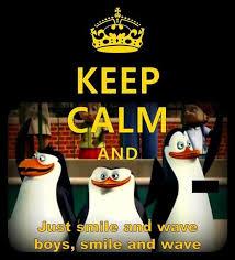 Penguin Birthday Meme - ideal 27 penguin birthday meme wallpaper site wallpaper site