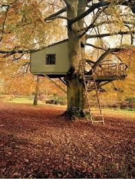 Simple Backyard Tree Houses by Simple Tree House Plans Simple Tree House Ideas That Can Be Easy