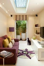 imaginative small narrow living room ideas with tv designs tikspor