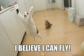 I Believe I Can Fly Meme - i believe i can fly jumping cat quickmeme