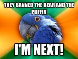 Paranoid Parrot Memes - reddits scared the paranoid parrot meme guy