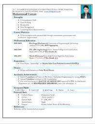 Sample Resumes For Sales Executives Letter For Resume Template Letter And Resume Builder Free Sample