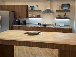captivating kitchen design trends with green cabinet and blue wall