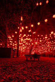 Halloween Lights Halloween Lights