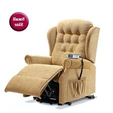 Electric Recliner Chairs Recliner Armchairs For The Elderly Standard Leather Riser Recliner
