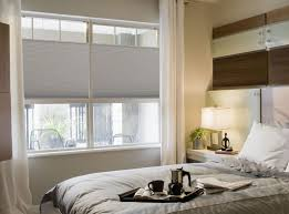 Blackout Cordless Roman Shades Cordless Top Down Bottom Up Cellular Shades Blindsshopper Com