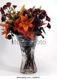 Crystal Flower Vases Crystal Flowers In Vase Stock Photos U0026 Crystal Flowers In Vase