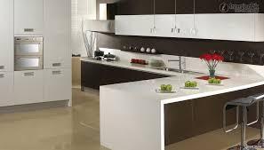 L Shape Kitchen Design Kitchen Cabinet L Shape Monsterlune