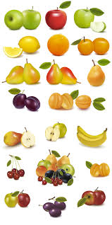 fruits vector graphics blog