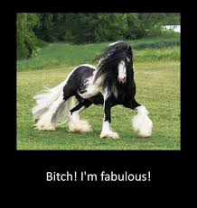 I Am Fabulous Meme - bitch i m fabulous meme by meepimmakittymiku12 memedroid