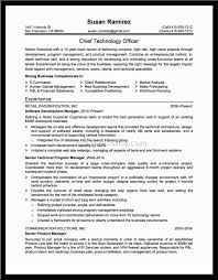 Resume Summary Examples For Software Developer by 68 Senior Accountant Resume Summary Accounts Receivable