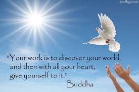 buddha quote pictures photos and images for