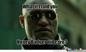 Meme Honey Badger - honey badger memes best collection of funny honey badger pictures