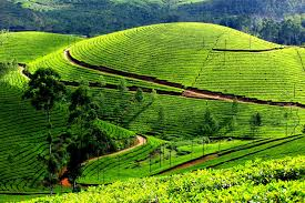 places in south india to visit in summer winter monsoon