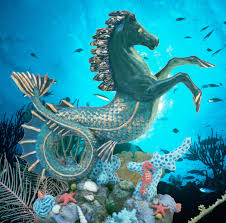 new page books the creature of the month hippocampus the sea