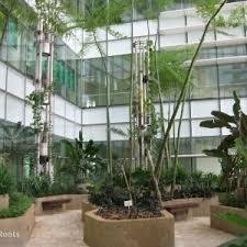 Best Home Design Software For Mac Uk Garden Design Tool Free Online Uk Luxury Garden Layout Tool Home