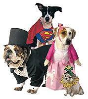 extremehalloween com pet halloween costume dog halloween