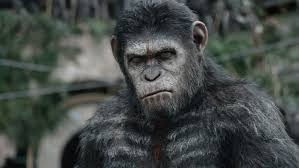 of the a complete history of planet of the apes rolling