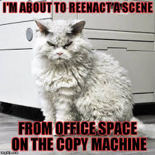 Copy Machine Meme - image tagged in pompus at the office imgflip