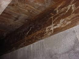 Repair Floor Joist Structural Floor Wood Repair American Basement Solutions