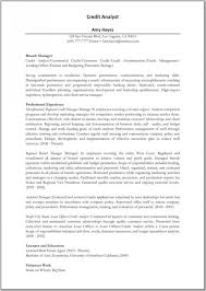 resume templates for business analysts duties of a police detective 14 best sle of professional resumes images on pinterest