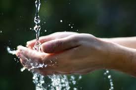due litri di acqua quanti bicchieri sono bevete acqua si ma quanti bicchieri al giorno