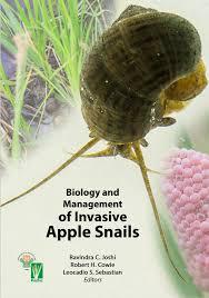 bram u0027s snailblog on neotropical snails and tidbits
