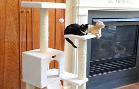 top 10 best cat tree house furniture for cats and kittens in 2017