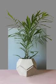 Head Planter Pots For Sale 251 Best Images About Cemento On Pinterest Buddha Garden