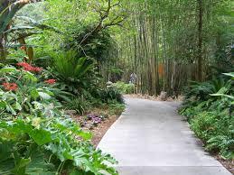 Botanical Gardens Sarasota Fl Selby Botanical Gardens In Sarasota Florida Garden Gallery