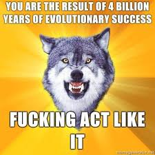 Wolf Meme - the courage wolf meme list of the best of courage wolf