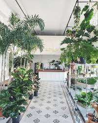Cascading Indoor Plants by Florist U2022 Plant Shop Owner U2022 Portland Oregon Green Pinterest