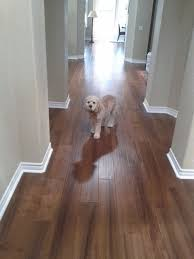 engineered wood floor hardness rating carpet vidalondon