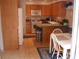 Painted Wood Floors Ideas by Interior Kitchen Wood Flooring Ideas Inside Impressive A Closer