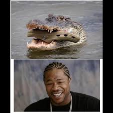 Yo Dog Meme - xzibit yo dawg memes wallpaper yo dawg photo shared by sonny24