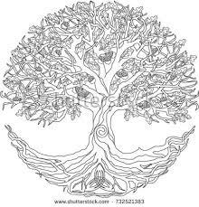 oak tree stock vector 732521383