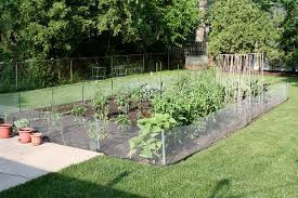 pictures fencing ideas for vegetable gardens free home designs