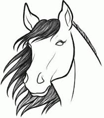 drawn horse face pencil and in color drawn horse face
