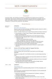 Electronic Resume Sample by Cfo Resume Samples Visualcv Resume Samples Database