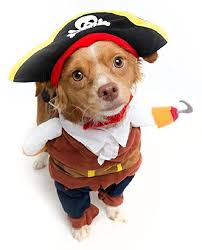 Dog Halloween Costumes 16 Cutest Halloween Costumes Dogs Paw Parazzi