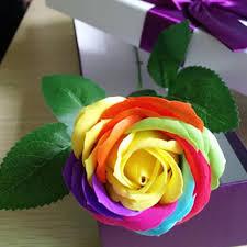 rainbow rose seeds beautiful flower seeds home garden bonsai
