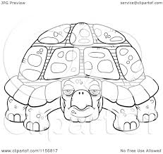 cartoon clipart of a black and white grumpy old tortoise vector
